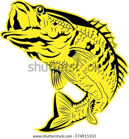 Vector fish illustration