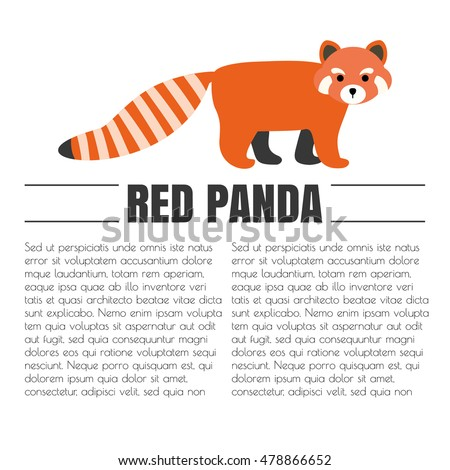 Vector Flat Red Panda Animal Symbol Stock Photo Photo Vector