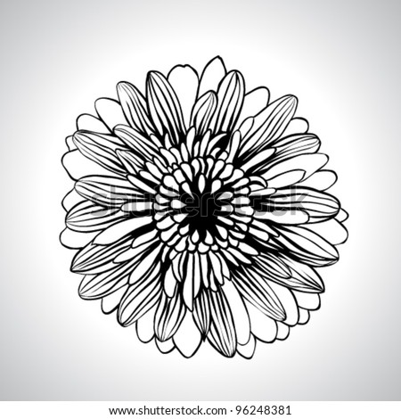 Vector flower isolated - stock vector