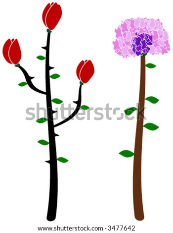 vector flowers depicting a rose/tulip and carnation
