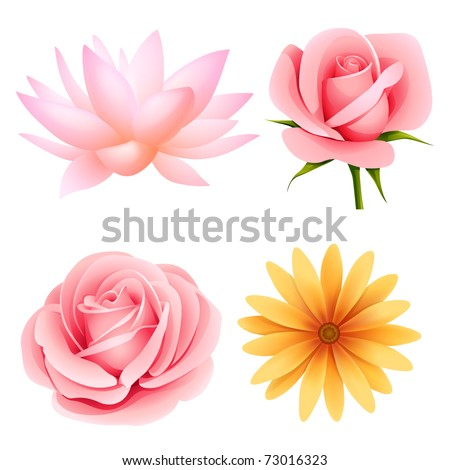 Vector flowers set of rose, lotus, daisy isolated on white - stock vector