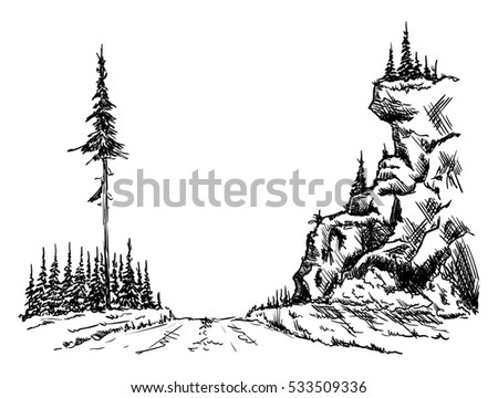 vector - forest path at landscape isolated on background