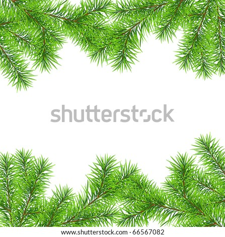 Vector frame from Christmas tree branch for decorate . - stock vector