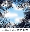 Vector frame in the form of the lumen of interwoven branches of trees against the blue sky with white clouds - stock vector