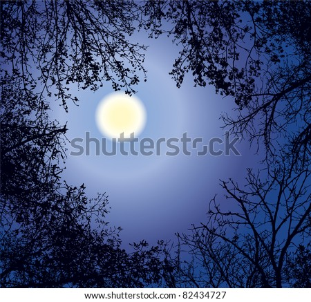 Vector framework from the weaved branches of trees against the night sky in a full moon - stock vector