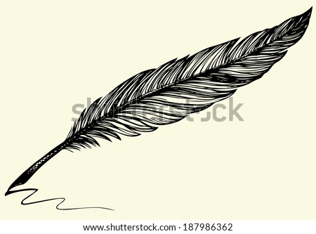 Vector freehand drawing of dark bird feather isolated on white background - stock vector