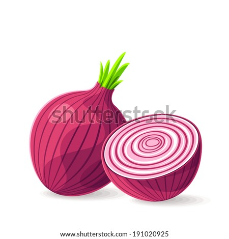 Vector Fresh Red Onion On White Stock Vector 191020925 ...