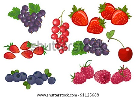 vector fruit and berry set #3 isolated on white - stock vector