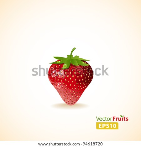 Vector fruits illustration. Strawberry - stock vector