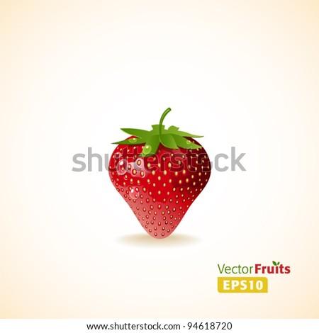 Vector fruits illustration. Strawberry - stock vector