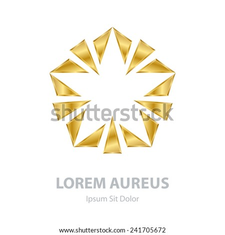 Vector Gold Abstract star on white background. Corporate logo template or design element - stock vector