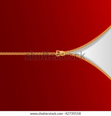 vector golden zipper - stock vector