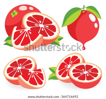 Vector grapefruits. Whole and cut pink grapefruits, collection of vector illustrations - stock vector