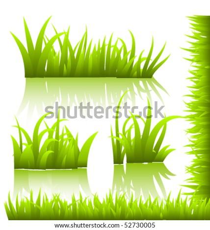 vector grass - stock vector