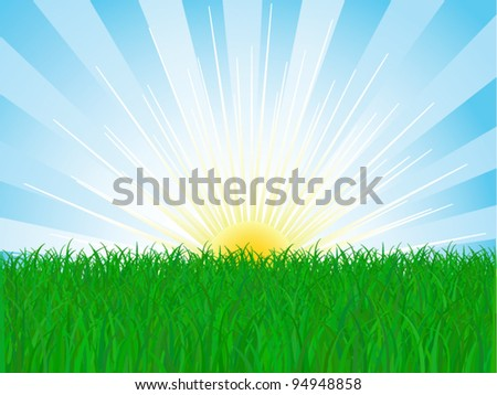 vector grass and sky - stock vector