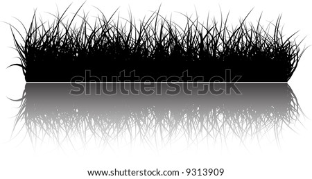 Vector grass background with reflections in the water - stock vector