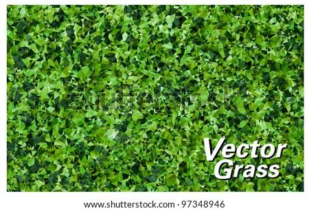 Vector Grass Texture - stock vector
