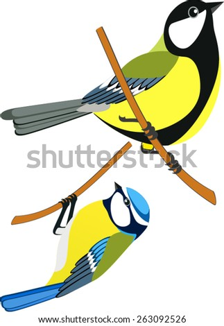 vector Great tit and Blue tit  - stock vector