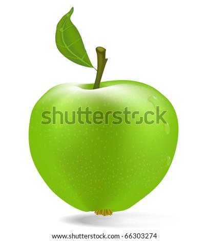 vector green apple with drops of dew - stock vector