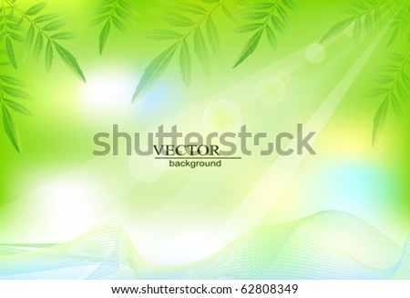 vector green background with  leaves - stock vector