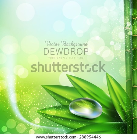 Vector green background with leaves and dew drops - stock vector