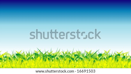 VECTOR green grass and beautiful sky - stock vector
