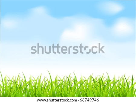 vector green grass and blue sky - stock vector