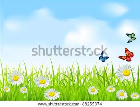 vector green grass and daisies on a background of blue sky with butterflies - stock vector