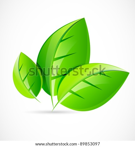 Vector green leaf concept - stock vector
