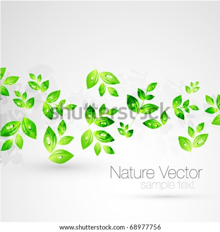 Vector green leaves background - stock vector