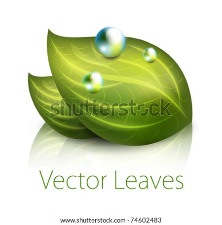 vector green leaves icon - stock vector