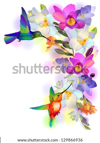 Vector greeting background with flitting humming-bird which brings gentle branch of beautiful pink orchids - stock vector