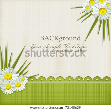 Vector greeting card with daisies and abstracts background - stock vector