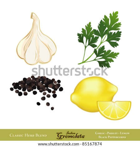 vector - Gremolata. Classic Italian condiment, blend of Garlic, Italian Flat Leaf Parsley, Lemon zest, Black Peppercorns, served with meats, seafood. Isolated on white. EPS8 compatible. - stock vector