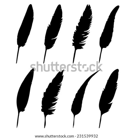 Vector group of feather on white background - stock vector