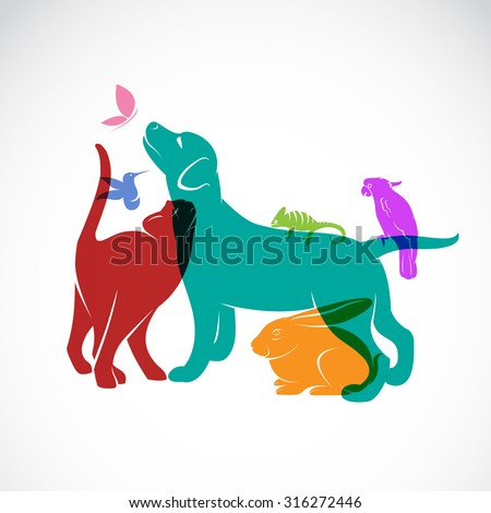 Vector group of pets - Dog, cat, parrot, chameleon, rabbit, butterfly, hummingbird isolated on white background, Pets Logo, Pets Tattoo, Pets Banners, Pets Design, Vector pets for your design. - stock vector
