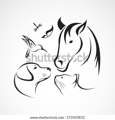 Vector group of pets - Horse, dog, cat, bird, butterfly, dragonfly isolated on white background - stock vector