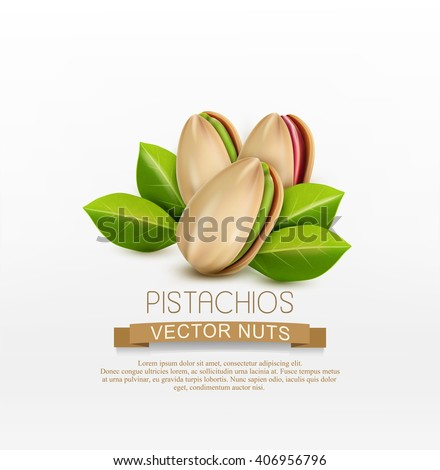 vector group of pistachio nuts, isolated on a white background - stock vector