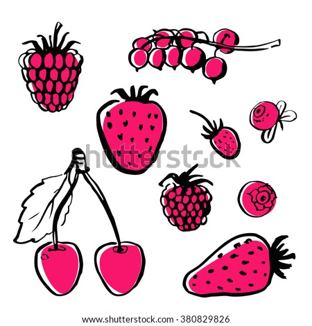 Vector hand draw food. Healthy food, farm, fresh, vegan, natural, product, raw. Ink brush. Berries. Raspberry, cherry, strawberry, strawberry, blackberry, blueberry, cranberry, currants.