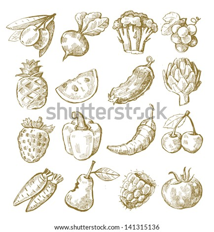 vector hand draw fruit and vegetable icon set on white - stock vector