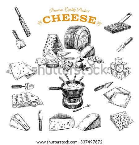 Vector hand drawn illustration with cheeses . Sketch.