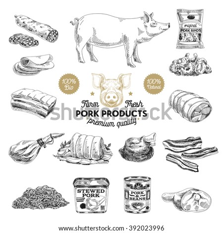Vector hand drawn Illustration with meat products. Pork meat. Sketch. Vintage style. Retro background.  - stock vector