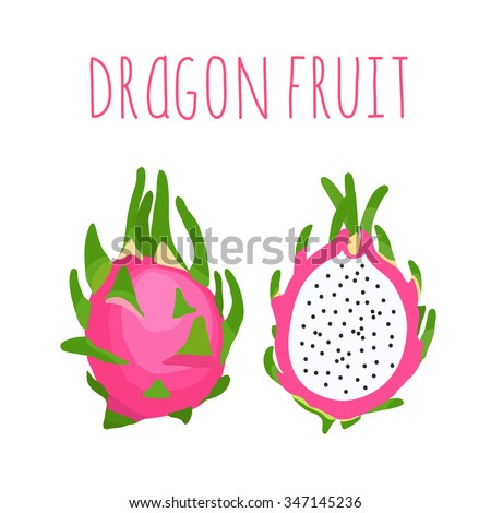 Vector hand drawn isolated  exotic dragon fruit with the inscription. Healthy lifestyle card. Eco friendly - stock vector