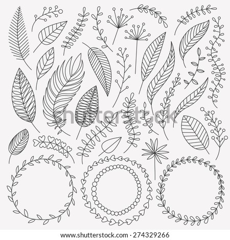 Vector hand drawn leaves set. Collection of Vintage elements. Greeting stylish illustration of leaves, flowers, berries, twigs, wreaths. Good for card, invitation, poster, web page design, journaling - stock vector