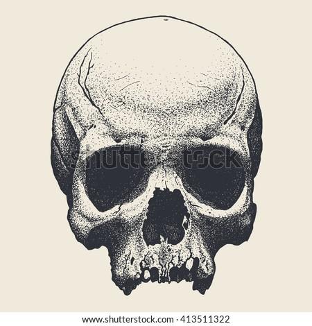 Vector hand drawn skull - stock vector