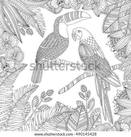 Vector Hand Drawn Toucan Bird Ara Stock HD Royalty Free 490145428