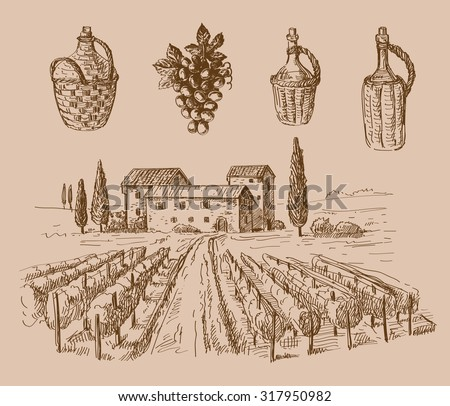 vector hand drawn wine sketch and vineyard doodle - stock vector