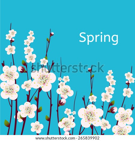 Vector happy easter card, wedding invitation template with an image of spring blossoming apricot  branches with a lot of flowers with blue background