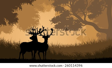 Vector horizontal illustration pair of wild deer in forest sunset. - stock vector