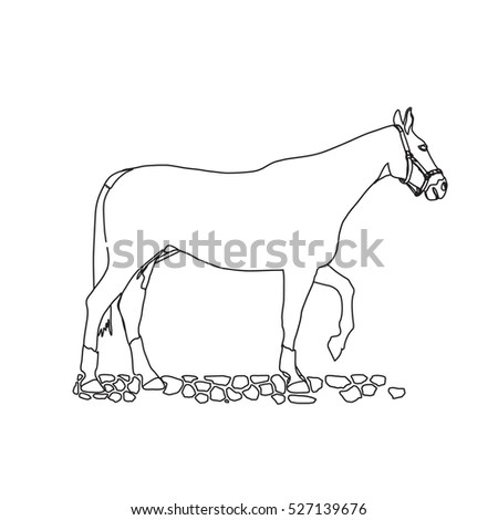 Horse drawing stock images royalty free images vectors for Black and white horse coloring pages